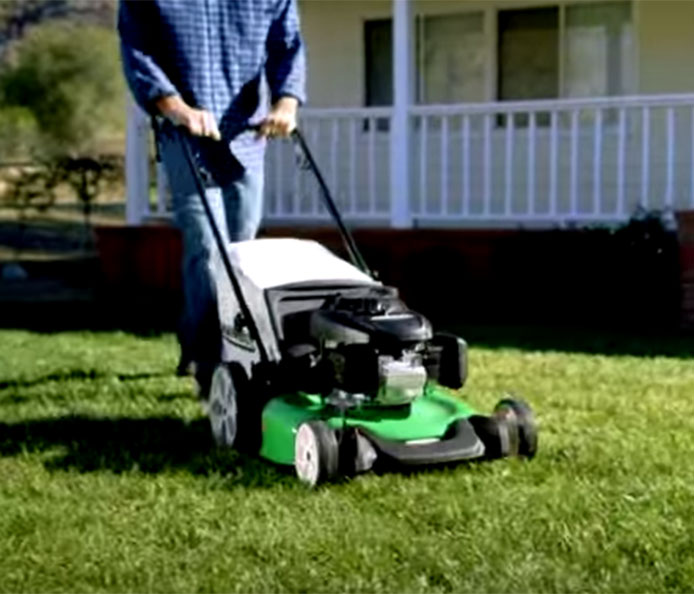 Lawnboy 21 Quot 53 Cm High Wheel Push With Carb Compliant